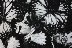 Baïsap - Butterfly shirts for men - Black and white butterfly printed cotton poplin - #1856
