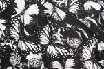Baïsap - Butterfly shirts for men, short sleeve - Black and white butterfly printed cotton poplin - #1805